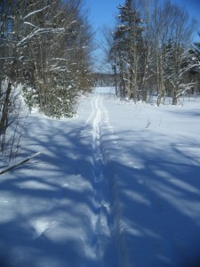 Ski trail leading to old lodge site in midwinter.